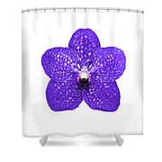 Purple Orchid On White Shower Curtain