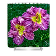 Purple Pair Shower Curtain