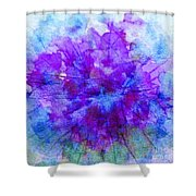 Purple Passion Hydrangea  Shower Curtain