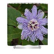 Purple Passionflower #2 Shower Curtain
