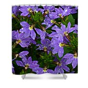Purple Perspective Shower Curtain