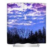 Purple Puffs Shower Curtain