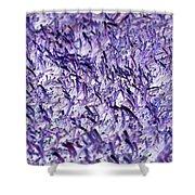 Purple, Purple, And More Purple Shower Curtain