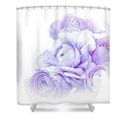 Purple Ranunculus Shower Curtain