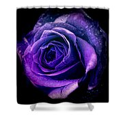 Purple Role Shower Curtain