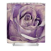 Purple Rose Shower Curtain