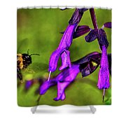 Purple Salvia 002 Shower Curtain