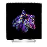 Purple Siberian Iris Flower Neon Abstract Shower Curtain