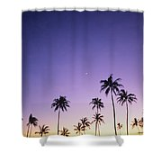 Purple Sky Palms Shower Curtain