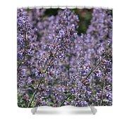 Purple Spikes Flora Impression 6.8.17  Shower Curtain