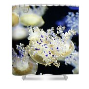 Purple Spotted Jellyfish  Shower Curtain