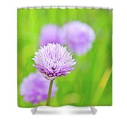 Purple Spring 11 Shower Curtain