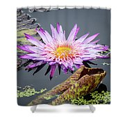 Purple Star Water Lily Shower Curtain
