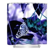 Purple Teal And A White Butterfly Shower Curtain