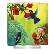 Purple-throated Caribs And Flamboyant Shower Curtain