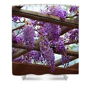 Purple Trellis Shower Curtain