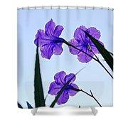 Purple Trio Shower Curtain