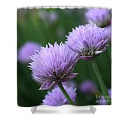 Purple Twins Shower Curtain