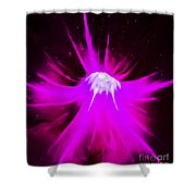 Purple Universe Shower Curtain