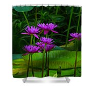 Purple Water Lilies Shower Curtain