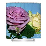 Purple With Yellow Shower Curtain