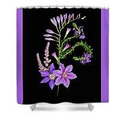 Purples Shower Curtain