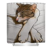 Purrfect Pose Shower Curtain