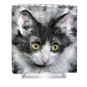 A Cat With Green Eyes Shower Curtain