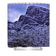 Pusch Ridge Snowfall Shower Curtain