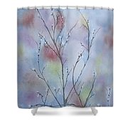 Pussywillows Shower Curtain