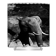 Qn The Move Shower Curtain