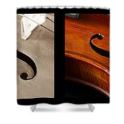 Quadriptych Of Musical Curves Shower Curtain