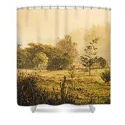 Quaint Countryside Scene Of Glen Huon Shower Curtain