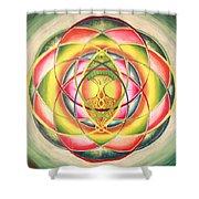 Quantic Arborescence Shower Curtain