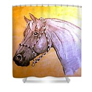 Quarter Horse W/ Rope Halter Shower Curtain