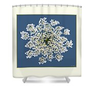 Queen Anne's Lace Flower Shower Curtain