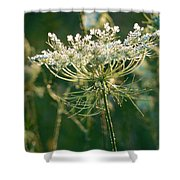 Queen Anne's Lace In Green Vertical Shower Curtain