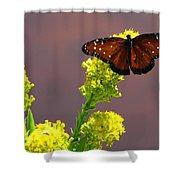 Queen Fritillary Shower Curtain