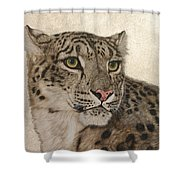 Queen Of The Himalayas  Shower Curtain