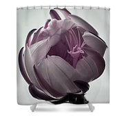 Queen Of The Night In Bloom Shower Curtain