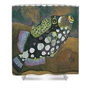 Queen Trigger Fish Shower Curtain