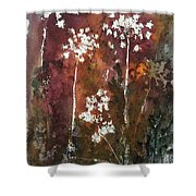Queens Lace 3 Shower Curtain