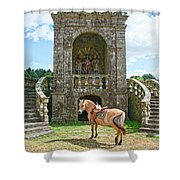 Quelven Village Square, Awaiting His Owner, Brittany, France Shower Curtain
