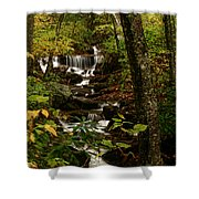Quiet Autumn Stream Shower Curtain