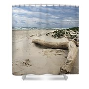 Quiet Day At The Beach Shower Curtain