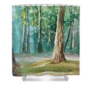Quiet Forest Shower Curtain