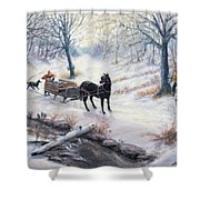 Quiet In The Woods Shower Curtain