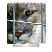 Quiet Thoughts Shower Curtain