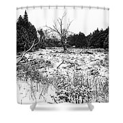 Quiet Winter Black And White Shower Curtain