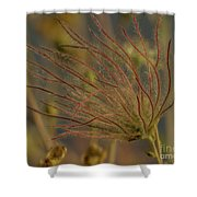 Quirky Red Squiggly Flower 4 Shower Curtain